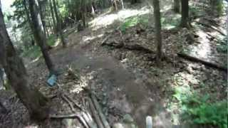 MTB KT VT Moose Alley Trail