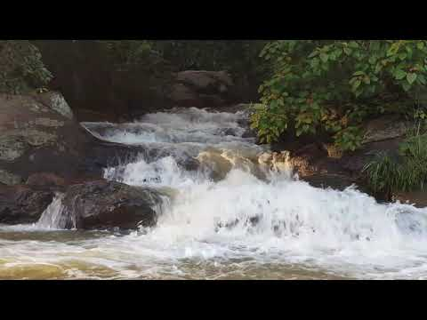 relaxing sounds of water stream 10mins (natural therapy)