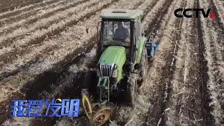《我爱发明》 20200520 黑土地上的风火轮|CCTV农业