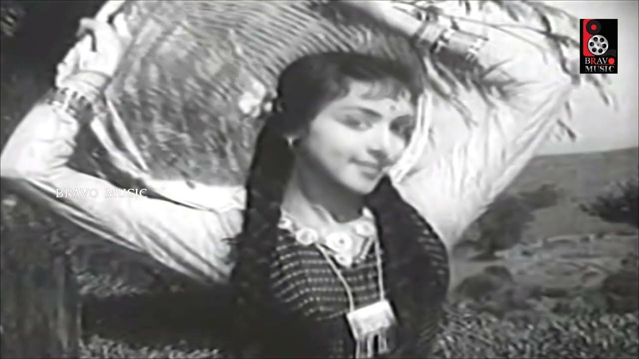 Singaara Therukku | சிங்கார தேருக்கு | Sirkazhi Govindarajan ,L. R. Eswari Superhit Song HD