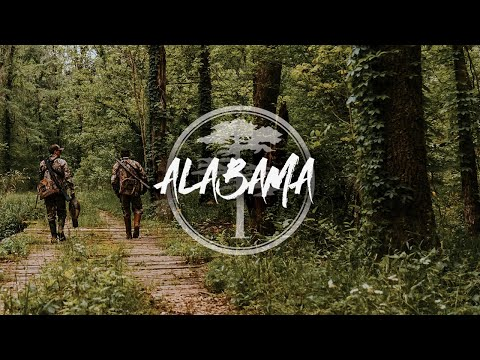 Turkey Hunting- Late Season Alabama Gobbler!