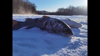 Зимняя рыбалка на реке Сукпай Декабрь 2020