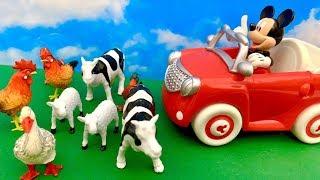 🐭 Myszka Miki i Myszka Minnie 😊 Zwierzęta na drodze 😲 Bajka dla dzieci PO POLSKU