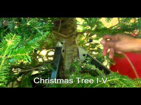 Intravenous Watering Christmas Tree I V Youtube