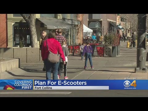 BEARDO - Fort Collins is getting E-Scooters