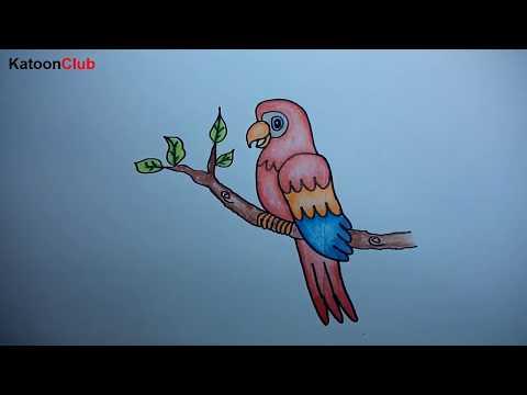 นกแก้ว สอนวาดรูปการ์ตูนน่ารักง่ายๆ ระบายสี How to Draw Parrot Cartoon Easy Step by Step