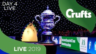 Day 4 LIVE | Crufts 2019