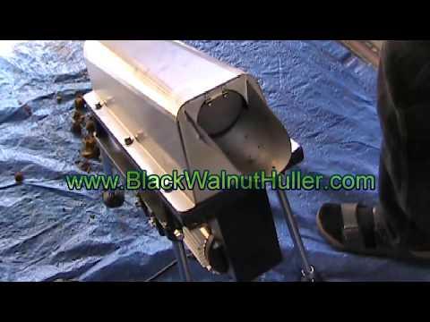 Electric BLACK WALNUT HULLER - Automatic Machine - Dehusks In Seconds! Www.blackwalnuthuller.com