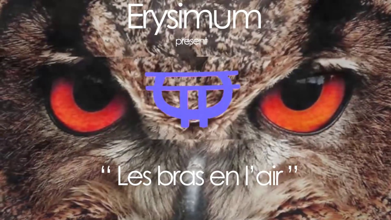 "Erysimum ""Les bras en l'air"""