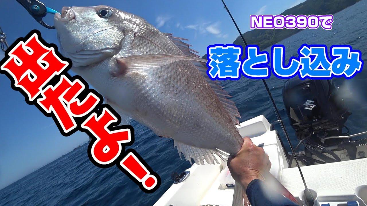 NEO390で落とし込み釣り!