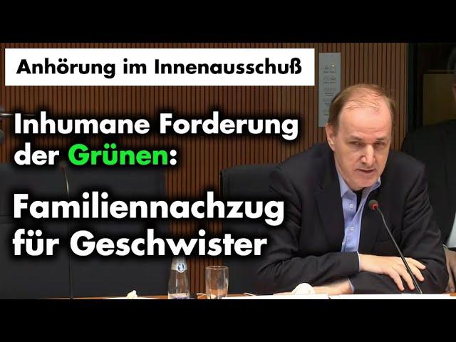Anhörung im Innenausschuß: Grüne wollen neue Anreize zur illegalen Migration