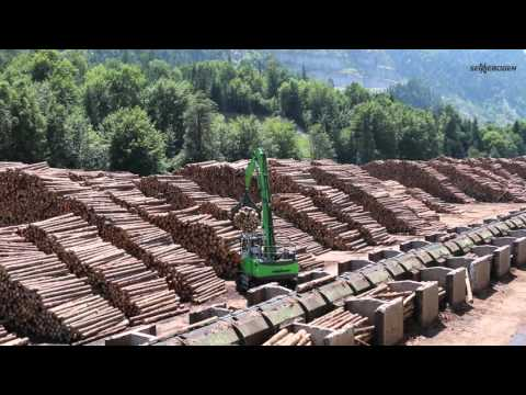 SENNEBOGEN 735 E Pick & Carry Timber Handler - Log handling in sawmill - Austria