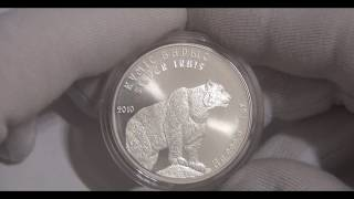 1 тенге 2010 серебряный барс Обзор