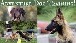 Adventure Dog Training with Stonnie Dennis