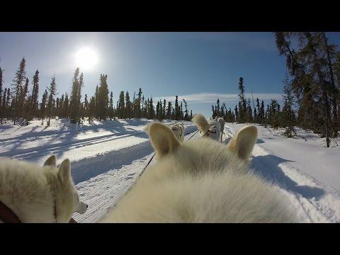 Big Story:  On Thin Ice