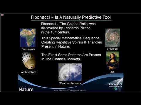 How to Trade Fibonacci Trend Inception & Reversal Levels with Fibonacci Trading Institute