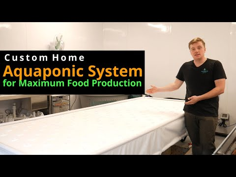 Custom Home Aquaponic System for Maximum Food Production