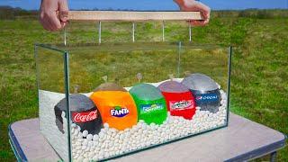 Experiment: Giant Balloons of Coca Cola & Fanta & Sprite & Mirinda & Pepsi VS Mentos