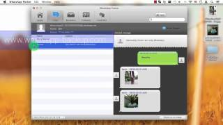 [iPhone WhatsApp Recovery] Extract WhatsApp Messages from iTunes Backup