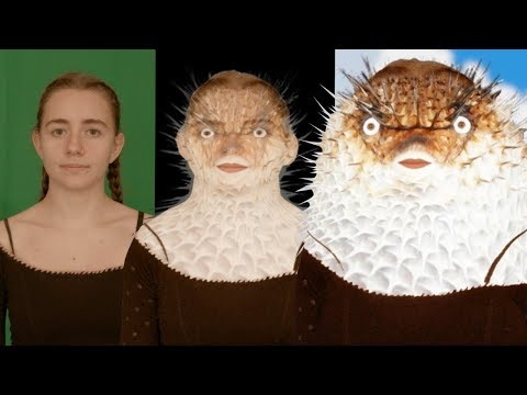Human Mrs. Puff Transformation - Girl Turns Into A Puffer Fish (VFX Breakdown)