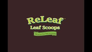 Releaf Leaf Scoops, The Best Gardening Hand Tool Grabbers On Amazon.