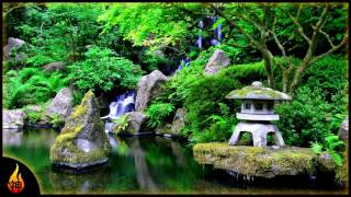 Beautiful Japanese Music | Sakura Dreams | Relaxing Instrumental Asian Music