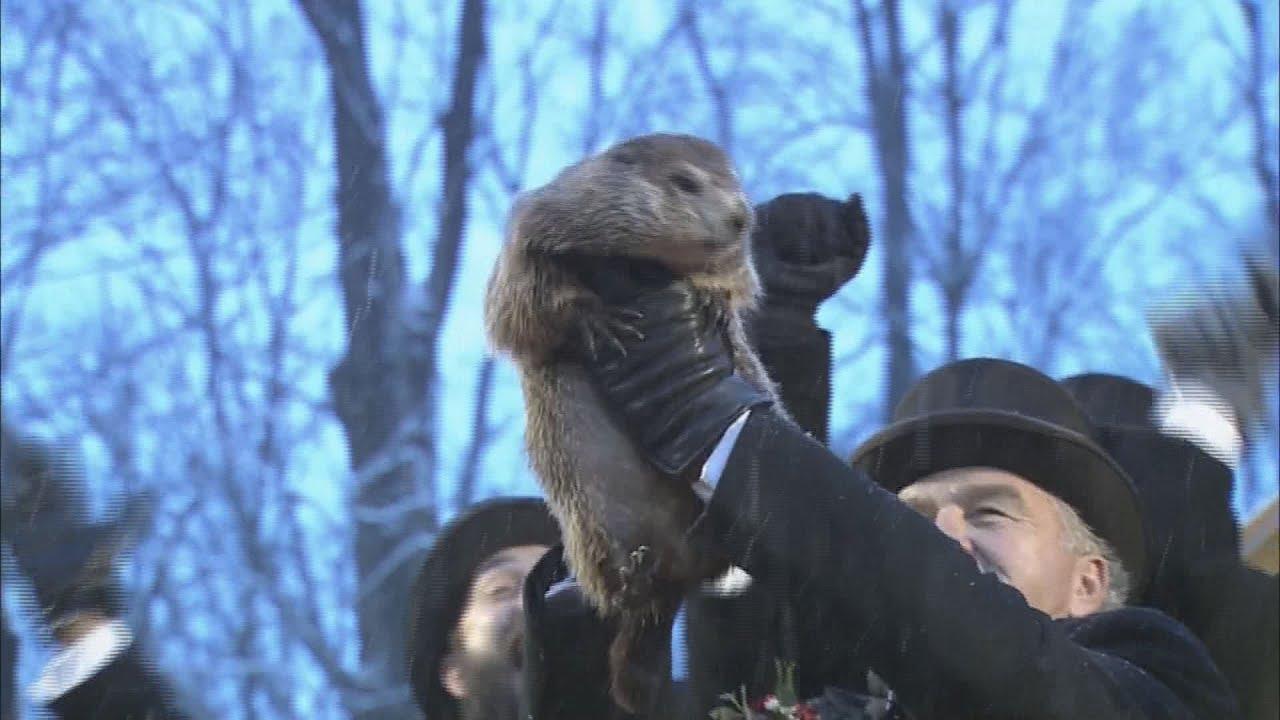 Groundhog Day 2020: Here's what Punxsutawney Phil's prediction ...