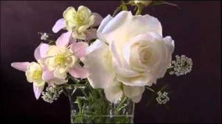 Francesco Geminiani: Sonata n. 1 for flute & b.c. in G minor (1750?)  / Festina Lente