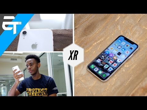 Apple iPhone XR In 2019 -  8 Month Later Review
