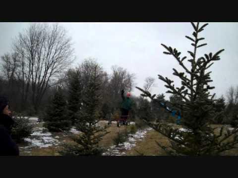 Michigan Christmas Tree