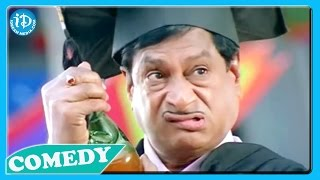 MS Narayana - All Time Hit Comedy Scenes