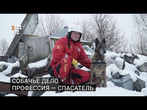 Собачье дело. Профессия — спасатель