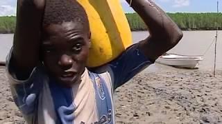 Pêche de crevettes royales en Tanzanie - Documentaire