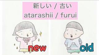 新しい / 古い Atarashii / Furui  New/old  | イ形容詞 I-adjective | 日本語 Japanese Conversat