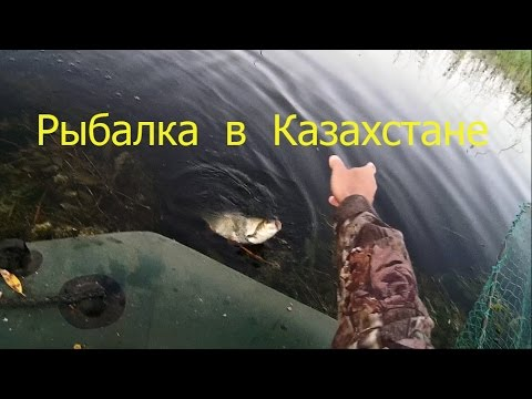 рыбалка ловля язей