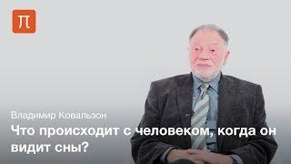 Осознанные сновидения - Владимир Ковальзон