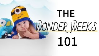 Everything You Need to Know About the Wonder Weeks
