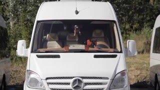 Микроавтобус на свадьбу Mercedes Sprinter / мерседес спринтер люкс золотой(, 2016-01-14T14:14:28.000Z)