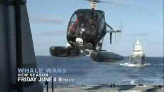 Whale Wars : Season 3 Preview