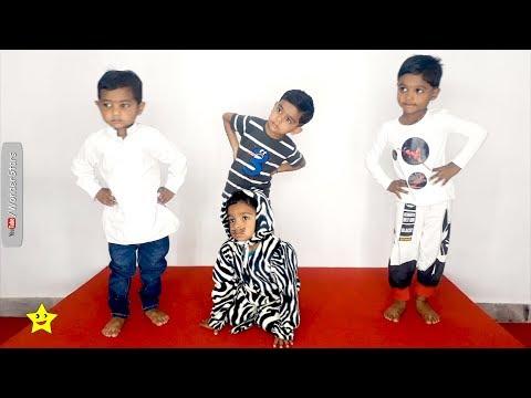 kaali billi meri cat : cute black and white dance : WonderStars