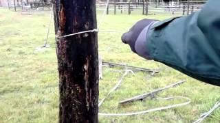 Conseils pour monter sa clôture électrique