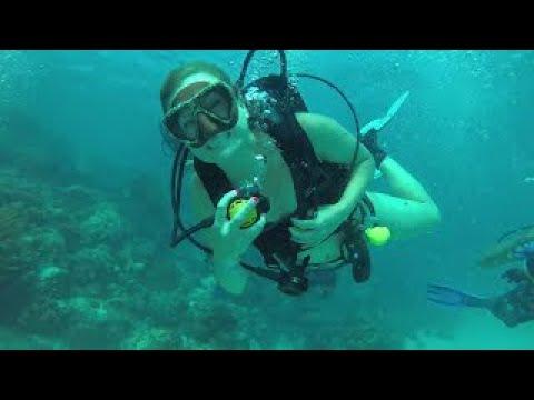 Marine Park, Ambergris Caya, Belize 2017