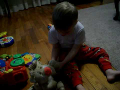 Logan and the Laughing Lion