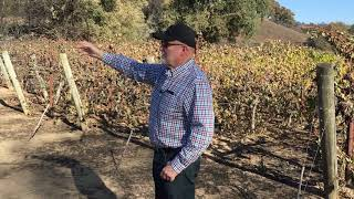 After Kincade Fire passes, farmers take stock