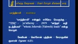 Tamil Bible Dictionary - y