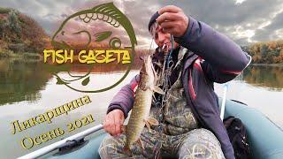 Осень время ловить щуку Рыбалка на лесном озере Ликарщина в кругу старых друзей