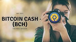 Bitcoin Cash to $2k Live Coverage | Photochain Project Gears Up! | 11 Nov