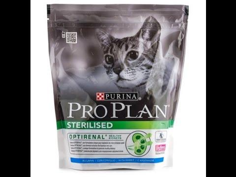 Большой выбор сухих кормов для кошек purina pro plan в интернет-магазине petshop. Ru.