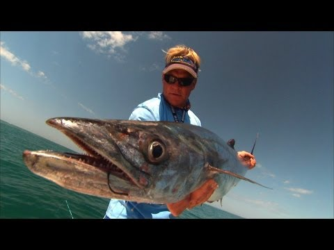 Boca Grande Fishing Videos For Grouper Kingfish And Permit