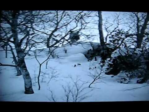 Craig Kelly & Jeff Fulton snowboarding in Japan 1996 Exit VHS Mt. Baker Hardcore M.B.H.C.